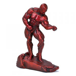Muscle 16 inch Bodybuilding Sculpture Trophy