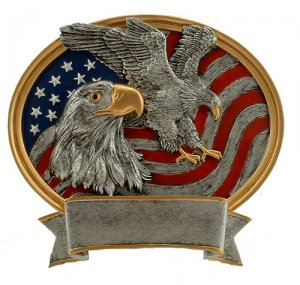 Military Awards Full Color Eagle Plaque Scout Trophy