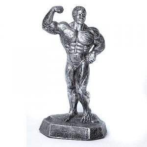 Single Biceps 19 inch Bodybuilding Sculpture Trophies